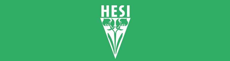 logo heisi