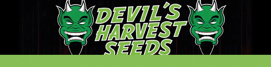 devil harvest seeds