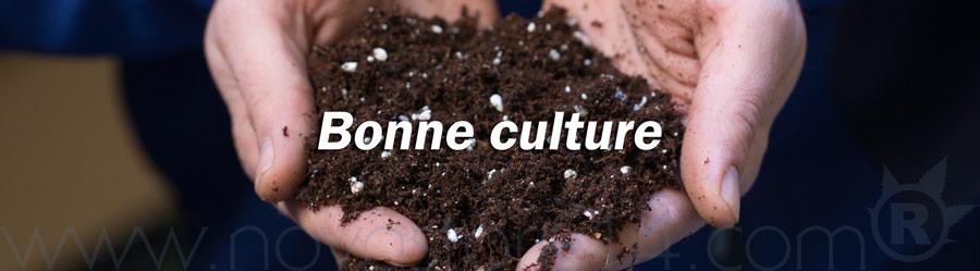 Bonne culture à tous