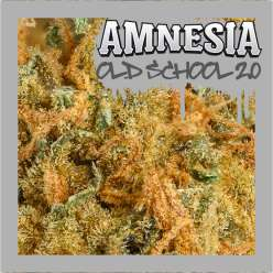 AMNESIA OLD SCHOOL 2.0