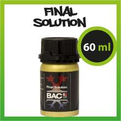 BAC FINAL SOLUTION