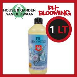 HOUSE & GARDEN PH - BLOOMING