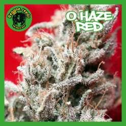 O HAZE RED