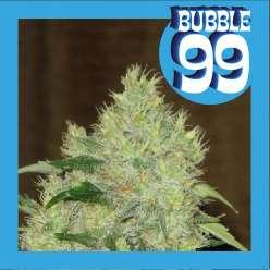 BUBBLE 99