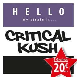 CRITICAL KUSH GRANEL
